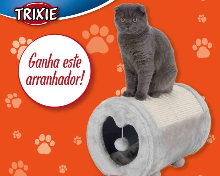 Arranhador Tambor para gatos