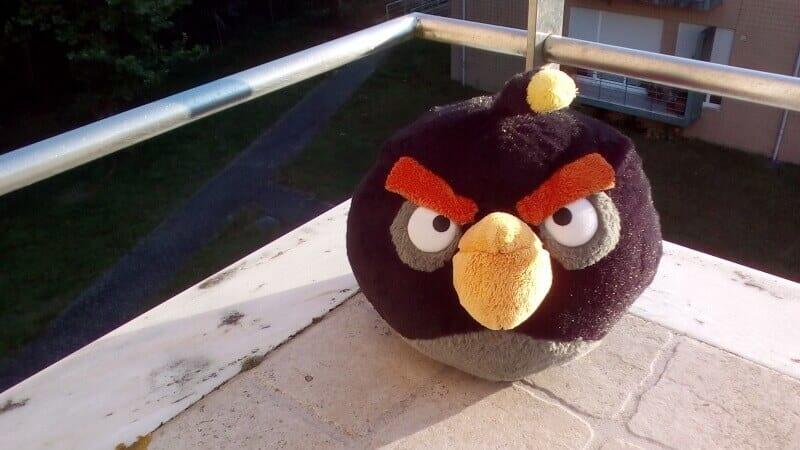 angry-bird-doogee-x5-max