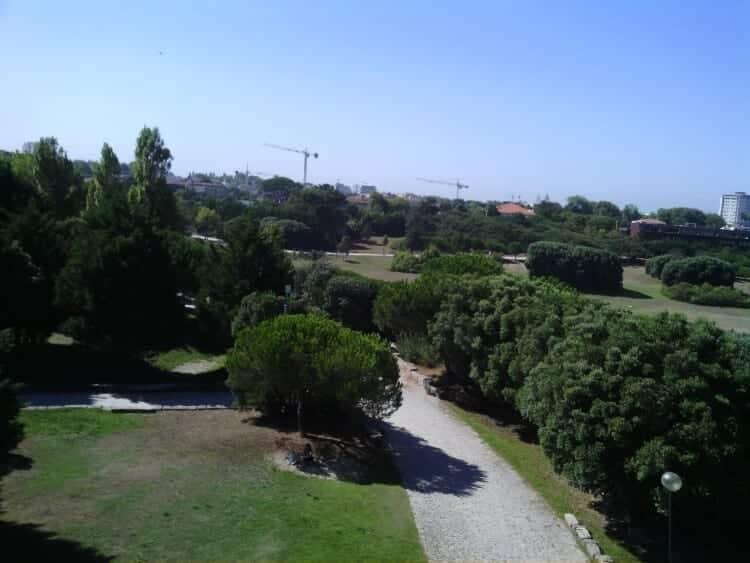 drone-fotos (3)