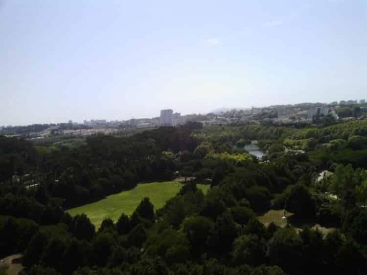 drone-fotos (4)