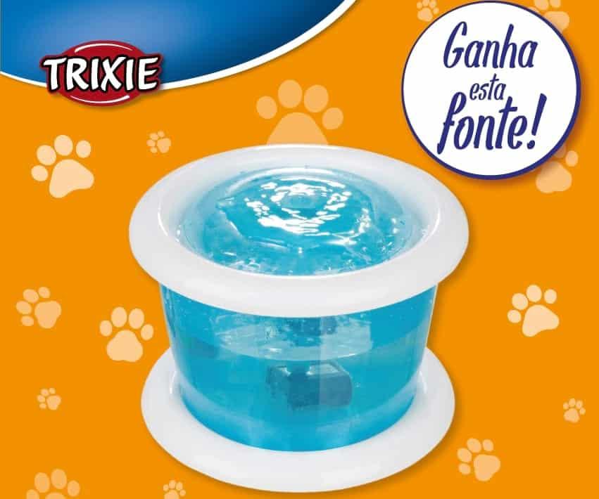 Fonte borbulhante para cães e gatos