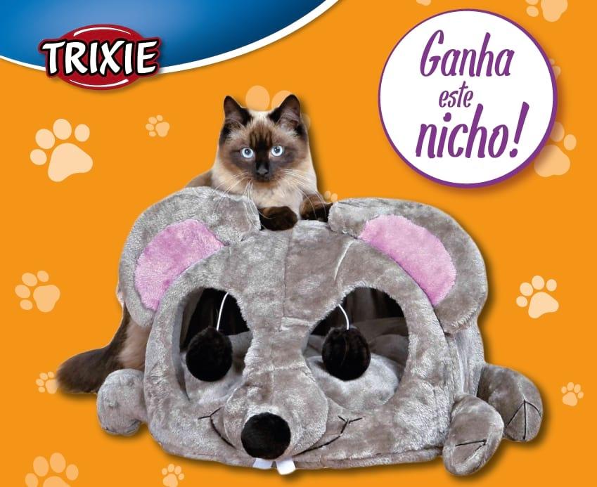 nicho com arranhador para gatos