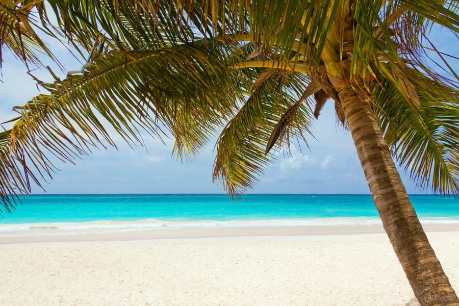 praia nas caraibas