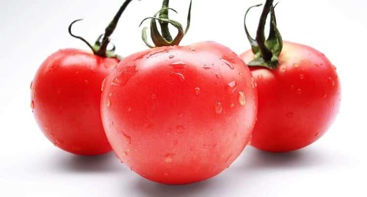 tomates-maduros